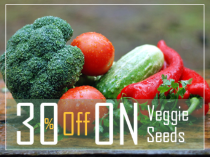 Get 30% Off on Vegetables Seeds